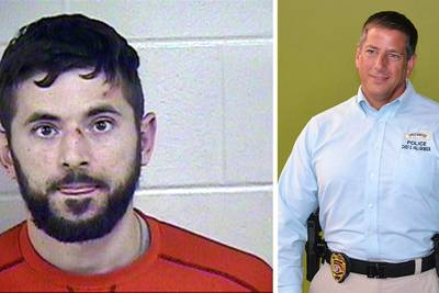 Former police chief pleads guilty to assaulting dad who tried to drown baby in pond